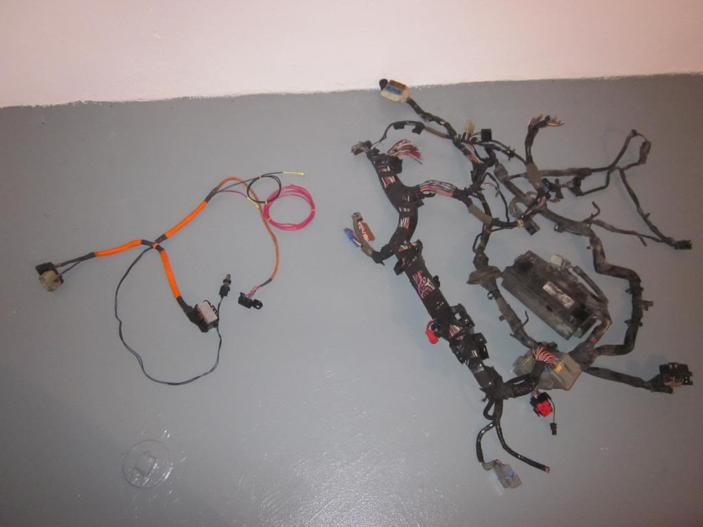 New offering. Race car wiring harness! - neons.org  neons.org